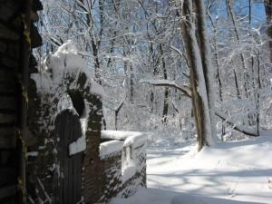 morris park philadelphia