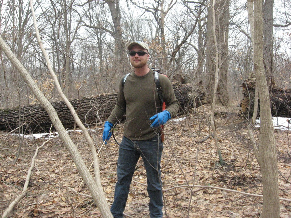 Luke Rhodes, Restoration Field Technician,Department of Parks and Rec targeting hundreds of cut stumps and basal bark application of Aralia elata