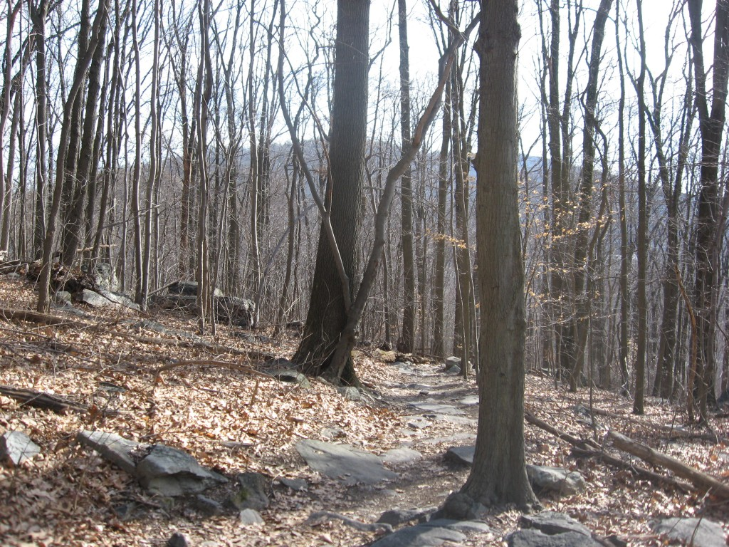 Weaverton, Maryland.  The Appalachian trail takes us up to a magnificent view of the mountain south of the Potomac river