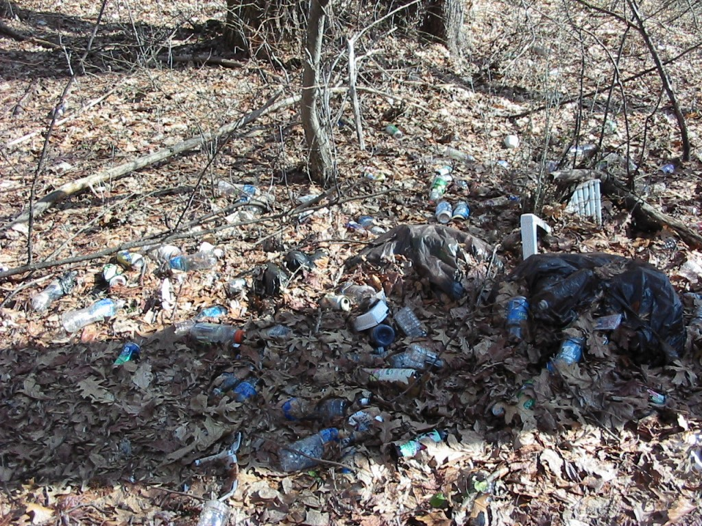 a trash dump near Lotus Road, Morris Park Philadelphia