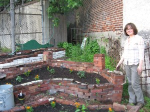 The vegetable garden of the Sanguine Root, Viola Street Philadelphia