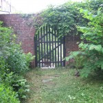 The native plant garden of the Sanguine Root, Morris Park Road, Overbrook, West Philadelphia, Pennsylvania