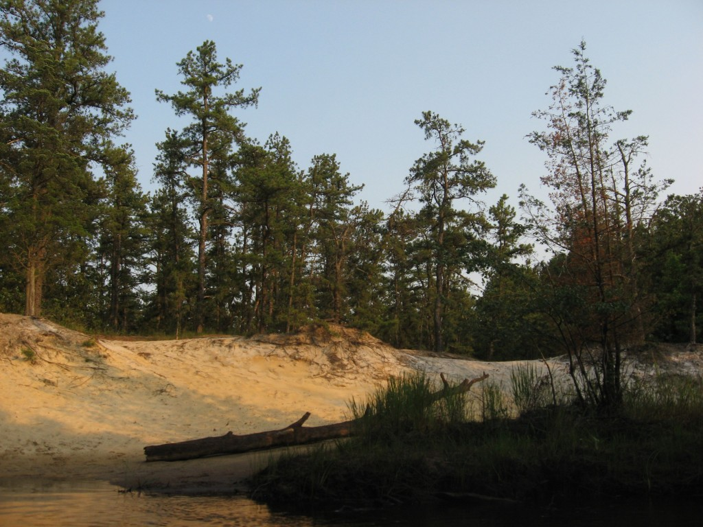 Mullica River, New Jersey Pine Barrens