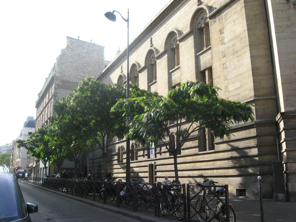 Mimosa Tree, Rue d'Armaille, Paris, France