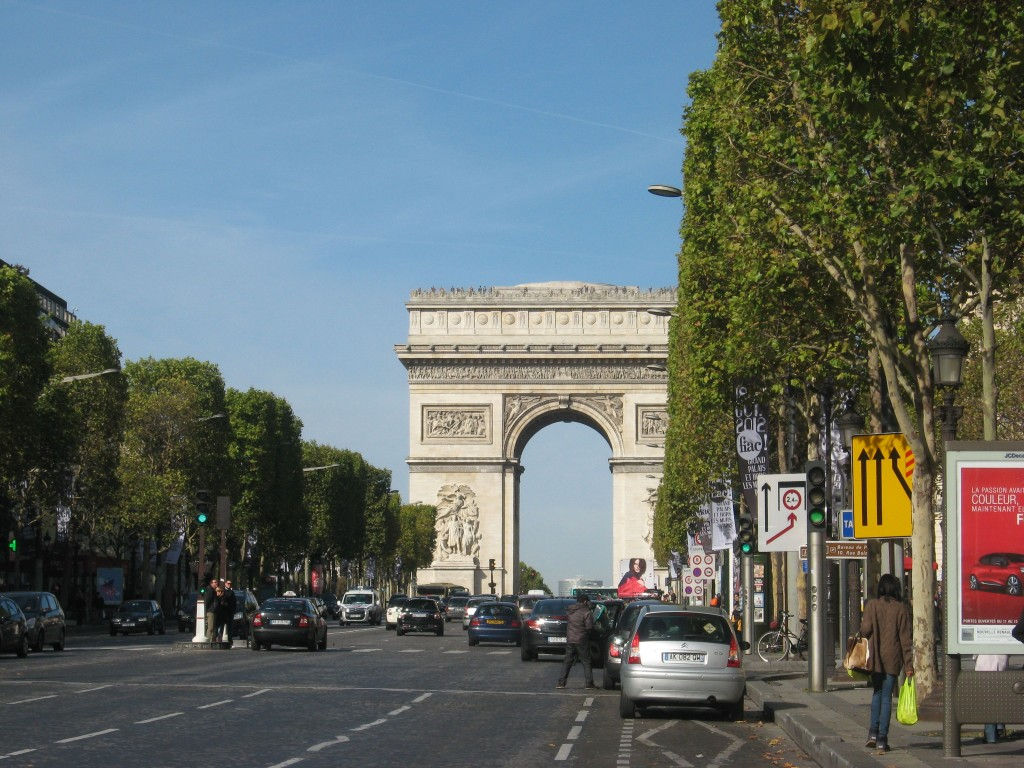 London Plane, Champs-Elysees, Paris, France