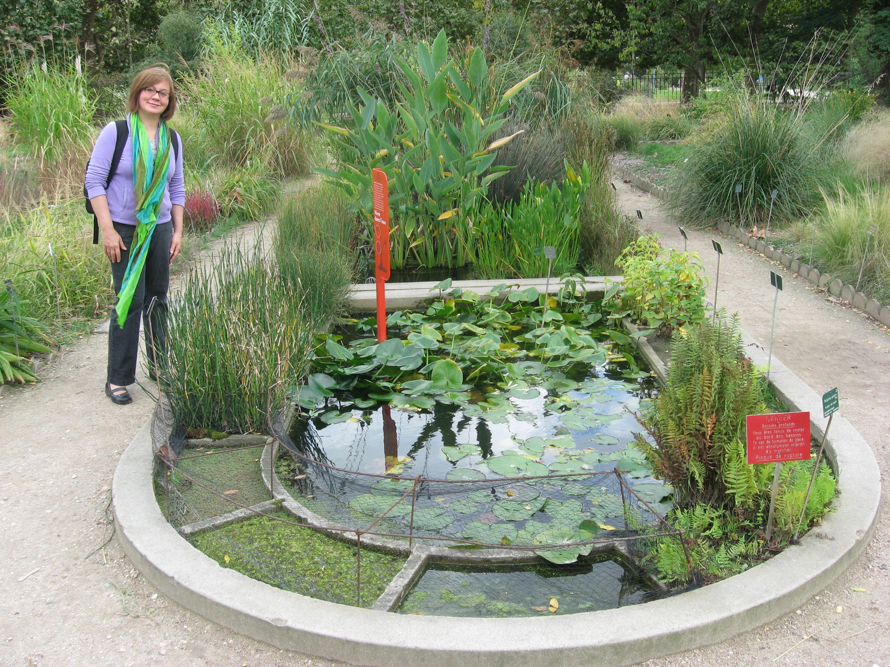 Paris Jardin des Plantes The Sanguine Root