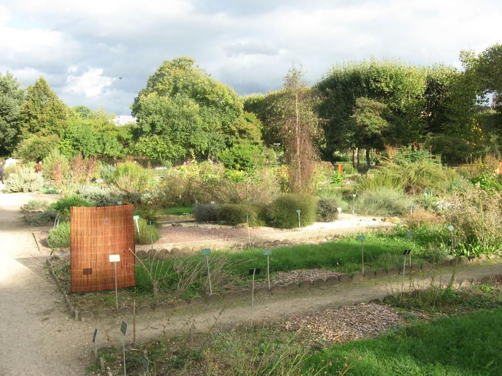 Paris gardens the sanguine root for Jardin des plantes