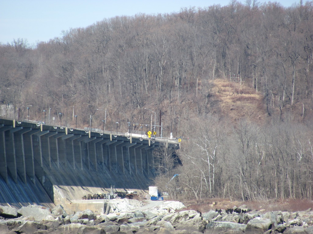 The bald Eagles at Conowingo Dam, Maryland. www.thesanguineroot.com