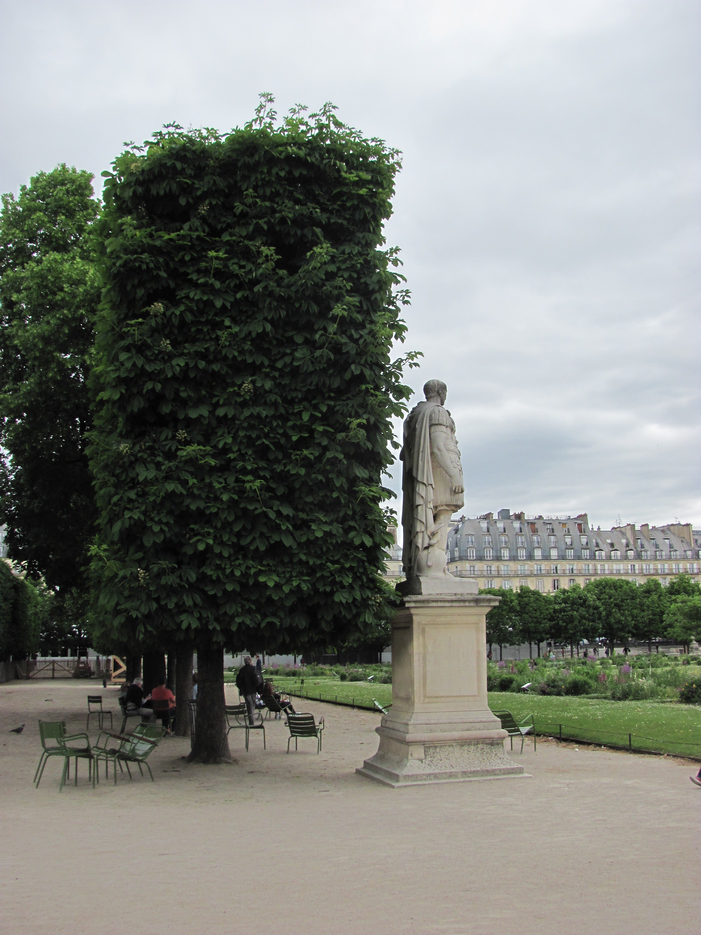 Horse chestnut in the garden of the tuileries paris france the leaf scorch affects the margins while blotch creates spots with yellow margins nonetheless the leaves in may are stunning as well as the pink flowers mightylinksfo